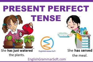 Present Perfect Tense with examples