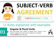 Subject Verb Agreement with Examples