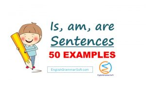 Is am are sentences in English (50 Examples)