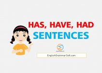 has have had sentences