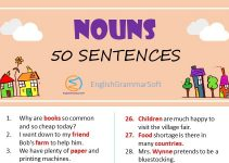 Sentences of Nouns
