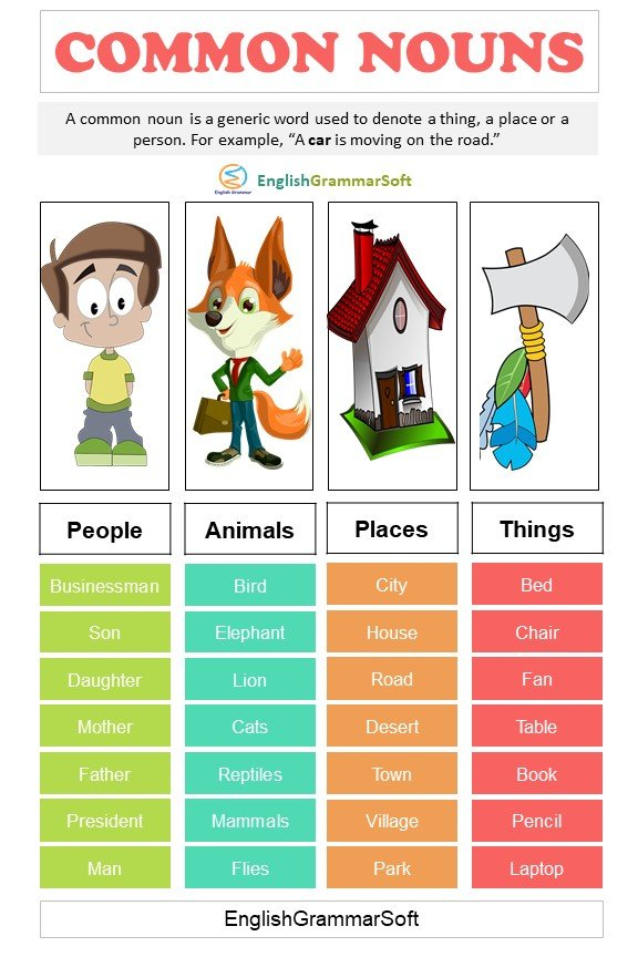 Common nouns definition and examples