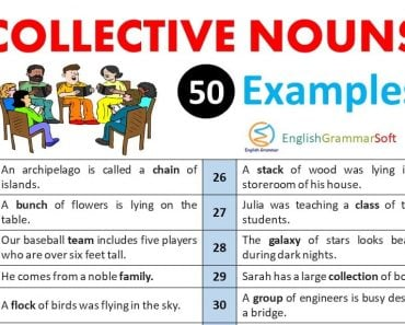 Collective Nouns Sentences (Collective Nouns Examples)